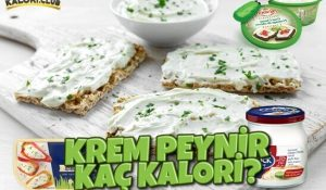 Krem Peynir Kaç Kalori?