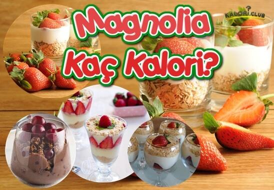 Magnolia Kaç Kalori? Kalorisi ve Besin Değerleri