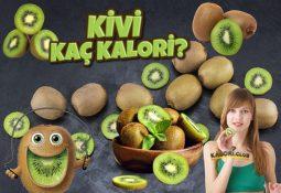 Kivi Kaç Kalori? Kalorisi ve Besin Değerleri