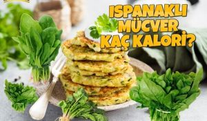 Ispanak Mücveri Kaç Kalori? Kalorisi ve Besin Değerleri