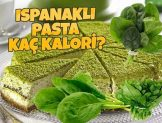 Ispanaklı Pasta Kaç Kalori?