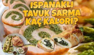 Ispanaklı Tavuk Sarma Kaç Kalori?