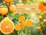 Portakal Kaç Kalori? Kalorisi ve Besin Değerleri