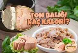 Ton Balığı Kaç Kalori? Diyette Yenir mi?